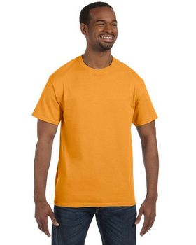 Hanes 5250T Men's Tagless T Shirt