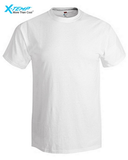 Hanes 4200X Adult X-Temp Performance Tee
