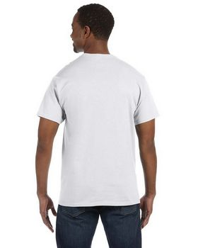 Hanes 5250T Tagless T Shirt - Shop at ApparelnBags.com